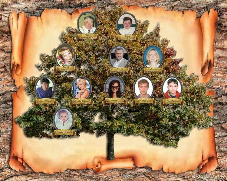Коллаж Семейное дерево